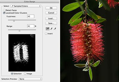 photoshop select color photoshop how to selecting with color range creativepro