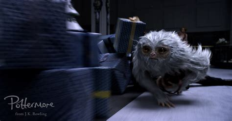where to find wallpaper demiguise fantastic beasts and where to bind them hd
