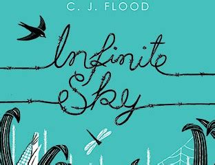 the weight of an infinite sky a novel books infinite sky by c j flood books of