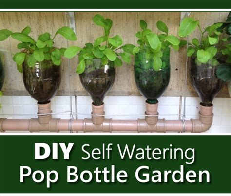 diy self watering herb garden self watering garden diy diy projects