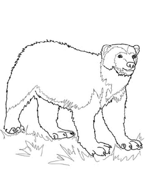 wolverine animal coloring pages coloring kids