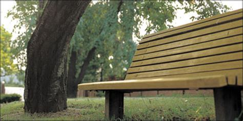 sex on the park bench the 6 strangest objects people were caught having sex with