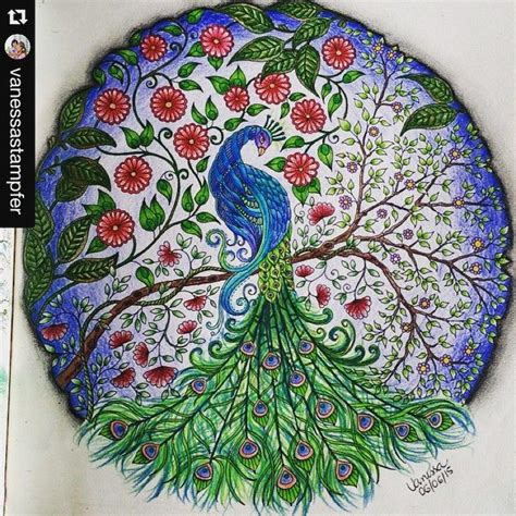 secret garden coloring book peacock pav 227 o jardim secreto a collection of ideas to try about