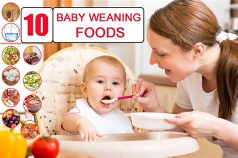 10 Best Foods Your Baby Top 10 Baby Weaning Foods