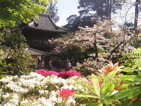 Ta Gardens by San Francisco Photo Gallery Japanese Tea Garden Tony