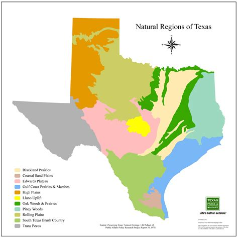 vegetation map of texas using species botany for design