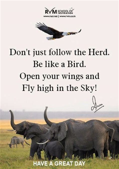 don t get high said the bird to the fly books don t just follow the herd be like a bird open your