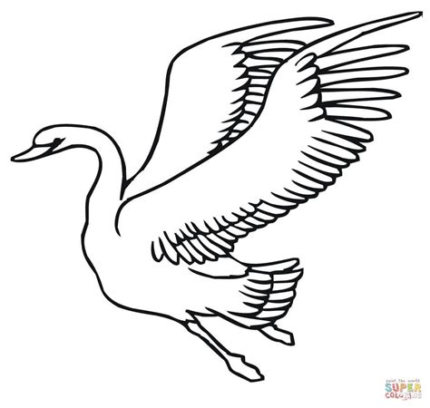 swan coloring pages for adults coloring pages