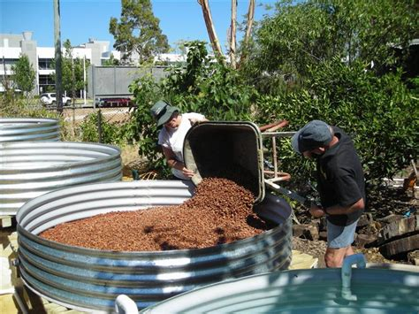 backyard farming for profit backyard fish farming