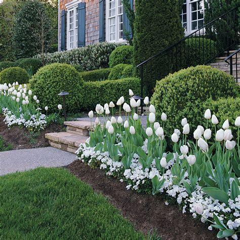 Bulb Garden Ideas Mass Plantings Tulip Bulbs Pansies And Bulbs
