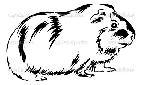 Guinea Pig Coloring Pages To Download And Print For Free Guinea Pigs Outline Colouring Pages