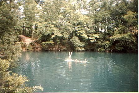 Tallahassee Sink Holes by Florida Sinkholes Cave Diving And Cavern Scuba Diving