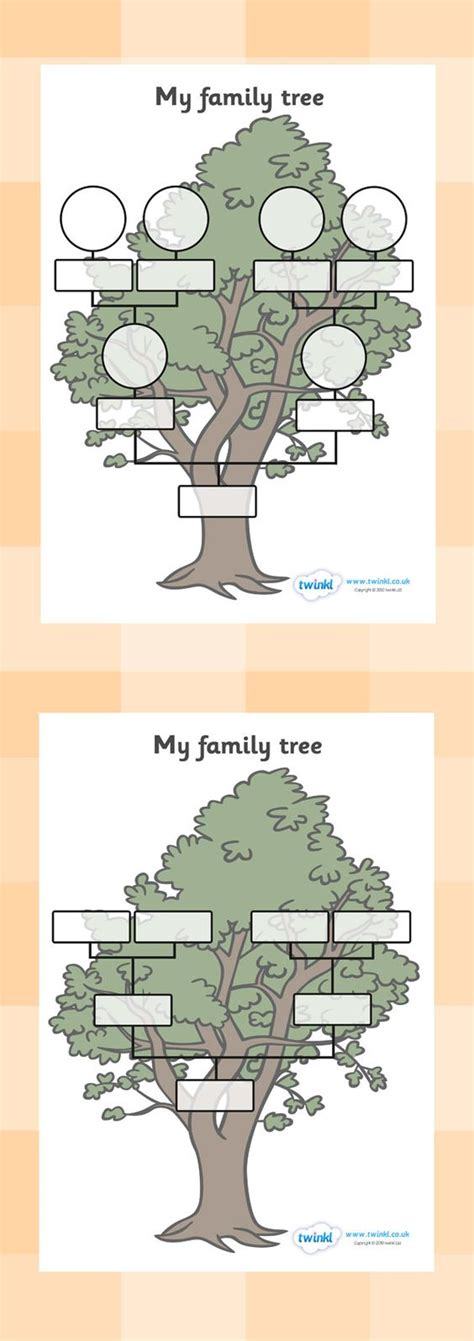 kindergarten family tree worksheets 1000 ideas about