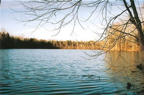Percy Priest Lake Cabins by Tennessee Waterfront Property In Nashville J Percy Priest
