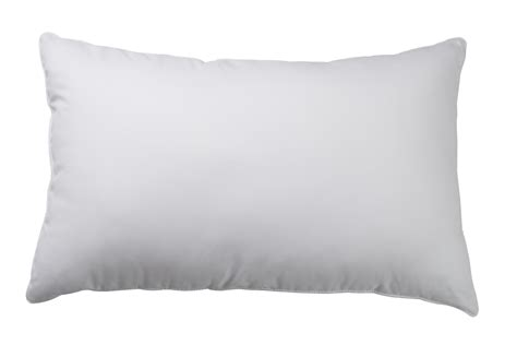 Boston Pillow by Shop E1 Boston Duvet And Pillow Co