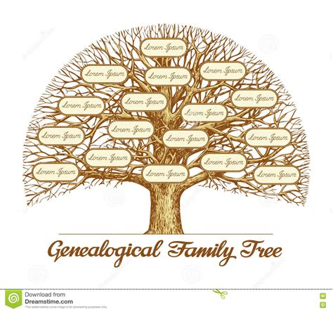 Vintage Genealogical Family Tree Hand Drawn Sketch Vector Illustration Stock Vector Family Tree Template Vintage Vector