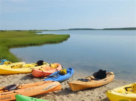Chappaquiddick Kayak Tours Kayak Tour By The Trustees Picture Of Cape Poge Wildlife Refuge Martha S Vineyard Tripadvisor