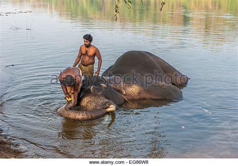 kerala ladies bathroom river bath kerala stock photos river bath kerala stock