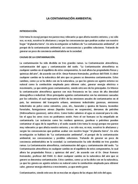 libro 2 ensayos ii letras ensayo de la contaminaci 211 n ambiental