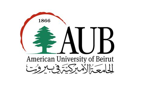 Aub Mba consult influx selected by aub executive mba program for