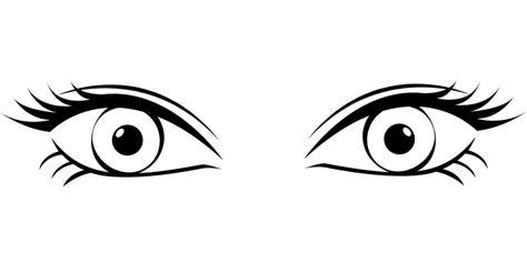 Mata Eyelid Transparant 눈 광학 속눈썹 183 pixabay의 무료 벡터 그래픽
