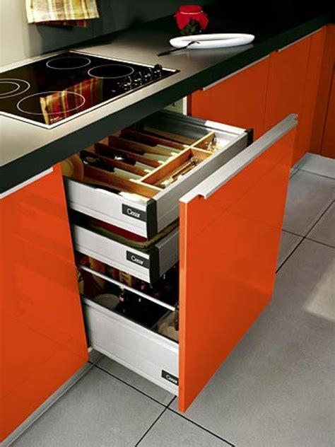 Kitchen Cabinet Inside Designs by Las Orqu 237 Deas Y Sus Variados Colores Plantas