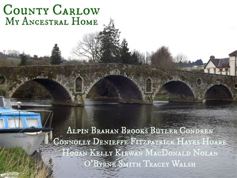 County Carlow Ireland Birth Records The Surnames Of County Carlow A Letter From Ireland