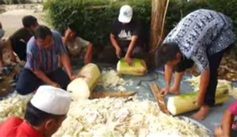 Fermentasi Pakan Ternak Em4 membuat pakan fermentasi ternak kambing ternak budidaya