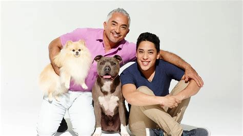 cesar millan s cesar millan s nation national geographic channel canada
