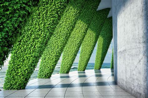 breathtaking living wall designs  creating