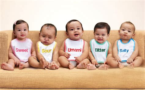 for babies baby hd wallpaper and hintergrund 2560x1600 id 114585