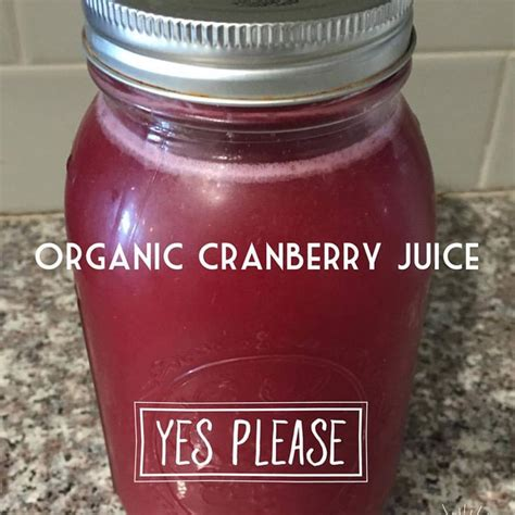 Kidney Detox Cranberry Juice by Freshly Made Cranberry Juice Concentrate You Can Make A