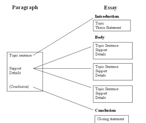Analytical Essay Structure by Paragraph To Essay