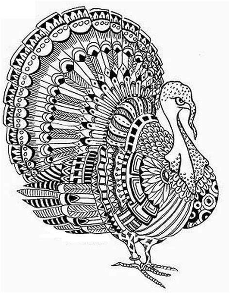 coloring pages for adults turkey adult coloring page thanksgiving turkey 7