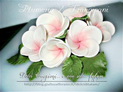 fiori in pasta di zucchero tutorial fiori frangipani o plumeria in pasta di zucchero