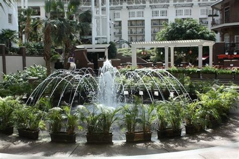 a waterfall picture of gaylord opryland resort gardens