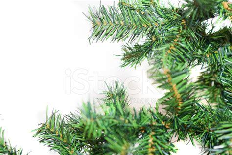 christmas greenery stock photos freeimages com