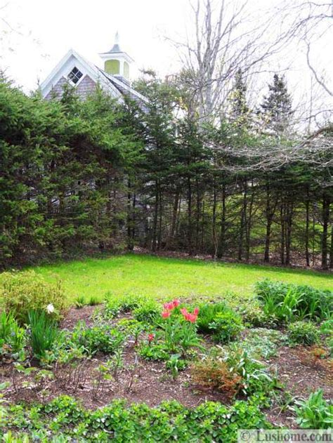15 spring garden design ideas flower beds and evergreen plants