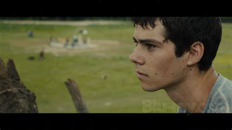 download film maze runner blue ray the maze runner 4k blu ray