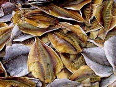 essiccazione alimenti essiccazione tecniche di cottura essiccazione tecnica