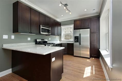kitchen wall colors with dark wood cabinets pictures of kitchens traditional dark espresso kitchen