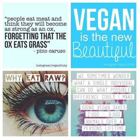 23 Best Images About Truth About Meat On Pinterest Hot Vegan Inspiration