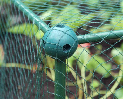 backyard netting how to grow bird netting gardening with charlie garden netting to protect your fruit