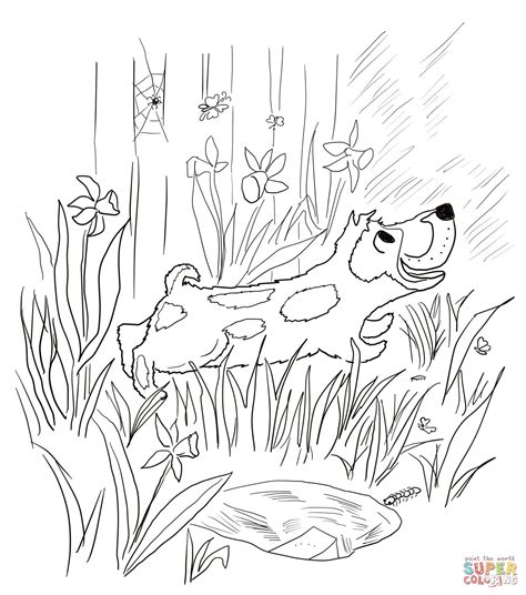 harry the dirty dog coloring pages az coloring pages