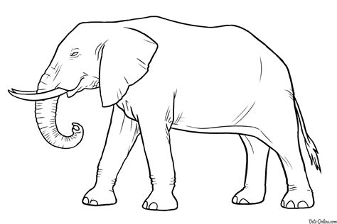 how to draw a doodle elephant раскраска слон