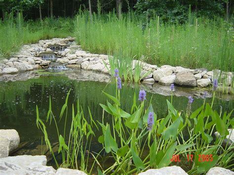 section 4 4 aquatic ecosystems aquatic ecosystems aquatic ecosystems inc