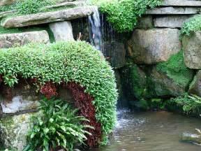 Rock Features In Gardens Kew Gardens