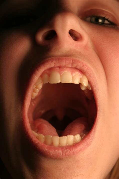 mouth open the mouth in detail close in by della stock on deviantart