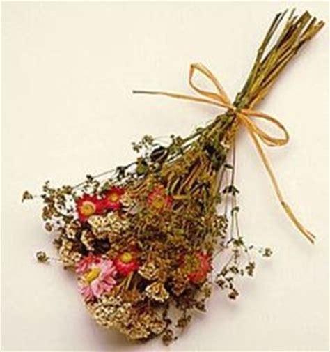 fiori essiccati vendita fiori secchi domande e risposte piante appartamento