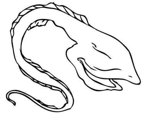 printable coloring page of eel coloring pages